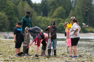 Students were encouraged to look under clam garden rocks for sea life.