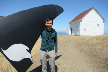 I am holding a Coroplast model of a real southern resident killer whale: Blackberry (J27).