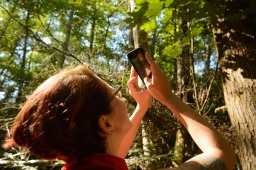 Snapping a picture for iNaturalist, the species reporting program
